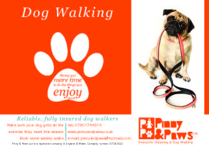 Dog Walking Service Flyer Make sure your dog gets all Images - Frompo